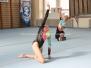 Sächsische Meisterschaften Junioren und Senioren 2012 in Riesa