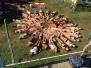 Sommertrainingslager Reichwalde Tag 4